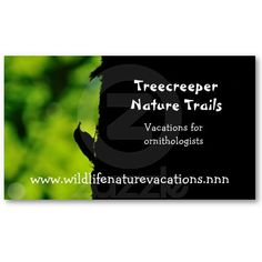 Nature and wildlife business card with a silhouette of a treecreeper in green and black.