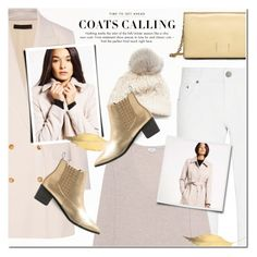 """""""Coats Calling"""" by anna-anica ❤ liked on Polyvore featuring Calvin Klein, The Row, dVb Victoria Beckham, Vince, SIJJL, Fall, coat and 2016"""