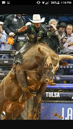 Mauney on Bushwacker Rodeo Cowboys, Real Cowboys, Cowboy Up, Cowboy And Cowgirl, Rodeo Rider, Bucking Bulls, Rodeo Events, Bull Riders, Cattle