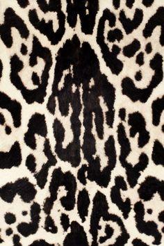 tiger print hair on calf