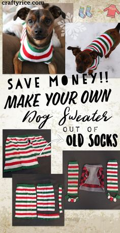 Save money by making your own dog sweaters using old socks y.-Save money by making your own dog sweaters using old socks you never use anymore… – - Small Dog Sweaters, Small Dog Clothes, Diy Clothes For Dogs, Chihuahua Clothes, Puppy Clothes, Dog Sweater Pattern, Dog Pattern, Shirt Diy, Dog Shirt