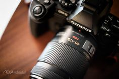 An affortable zoom lens for m43: Panasonic Lumix G X VARIO 45-175mm — Eyes Unclouded
