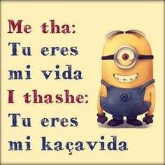 haha Besties Quotes, Girly Quotes, Best Friend Quotes, Fun Quotes, Funny Minion Memes, Funny Texts, Haha So True, Cute Animal Memes, Life Humor