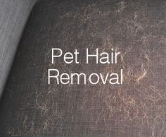 Pet hair on your furniture is pretty yuck, even worse if it's all over your clothes! Whilst we all love our fur babies, their hair can get annoying especially when it ends up on the outfit you're wearing on your date on Friday night!