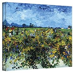 Art Wall Green Vineyard by Vincent Van Gogh Gallery Wrapped Canvas, 36 by 48-Inch