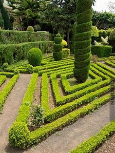Image result for Japanese Topiary Japanese Landscape, Dream Properties, Topiary, Vineyard, Landscaping, Outdoor, Image, Outdoors, Topiaries