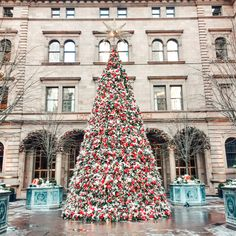 There is no place more magical than New York at Christmas! Here are 15 bucket list holiday activities you must do when visiting New York at Christmas. New York City Christmas, Christmas Travel, Vintage Christmas, Christmas Glitter, Christmas Time, Xmas, White Christmas, Christmas Vacation, Christmas Christmas