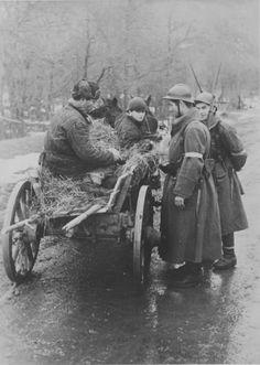 18.1.1942 Rumänische Soldaten bei einer Straßenkontrolle auf der Krim