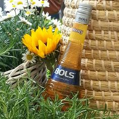 Inspired by the success of honey-flavoured whiskey in the US, Dutch liqueurs company Bols has created a honey liqueur aimed specifically at bartenders
