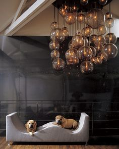 Dog Day Design: Stylish Ways to Incorporate Fido into Your Decor
