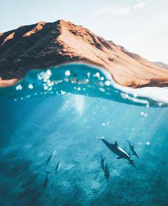 "143.2 mil curtidas, 672 comentários - BEAUTIFUL DESTINATIONS (@beautifuldestinations) no Instagram: ""The state of Hawaii consists of eight main islands 🐬 (📷:@nolanomura)"""