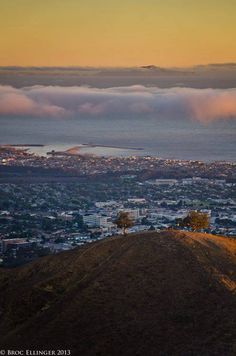 One of my very favorites! ... Ventura's Two Trees looking on the city and ocean by Broc Ellinger -