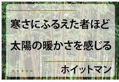 http://ameblo.jp/ichigo-branding1/entry-11430169924.html