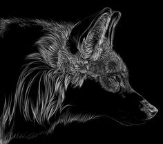 Ok, so I couldn't help myself and I had to post the WIP to my other scratchboard my wolf. So i'm working on my horse scratch and my wolf scratch together, so I don;'t get bored of on...