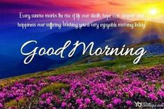 Good Morning Cards- Have a Wonderful Day Greeting Cards Images Good Morning Greeting Cards, Greeting Card Maker, Online Greeting Cards, Good Morning Greetings, Good Morning Wishes, Beautiful Morning Quotes, Morning Quotes Images, Good Day Quotes, Morning Pictures