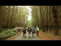 """Beyond The Way"" Trailer | Camino de Santiago Forum"