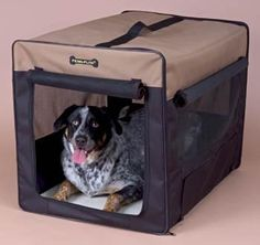 Penn Plax Portable Indoor/Outdoor Pet Home Crate >>> You can get more details here (This is an amazon affiliate link. I may earn commission from it)
