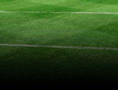 football-pitch-grass-118.jpg (1680×1280)