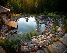 Natural swimming pool.