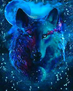 Wolf Images, Wolf Photos, Wolf Pictures, Tier Wallpaper, Wolf Wallpaper, Animal Wallpaper, Fantasy Wolf, Dark Fantasy Art, Fantasy Artwork