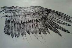 raven wings - Bing images
