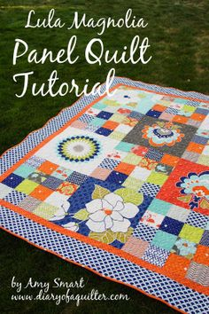Diary of a Quilter - a quilt blog: Panel Quilt Tutorial for Riley Blake