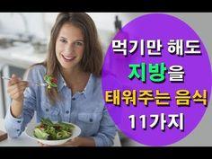 먹기만 해도 지방을 태워주는 음식 11가지