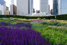 Designed by landscape architects GGN with perennial plantsman Piet Oudolf and theater set designer Robert Israel.
