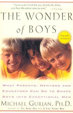 Game-changing insights into the developing brains and behavior of boys.