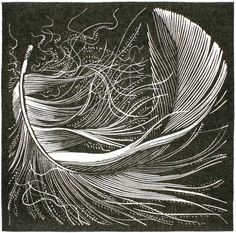Swan feather wood engraving by Colin See-Paynton