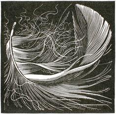 Swan feather wood engraving by Colin See-Paynton - tattoo? Illustrations, Illustration Art, Botanical Illustration, Scratchboard Art, Arte Popular, Wood Engraving, Woodblock Print, Printmaking, Art Prints