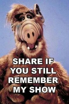 Alf - We still watch on the Hub TV Network - http://www.hubnetwork.com/
