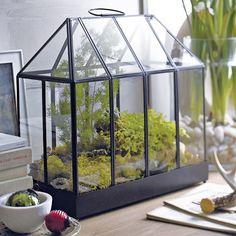 socker serre blanc int rieur ext rieur home decorating ideas pinterest herbes. Black Bedroom Furniture Sets. Home Design Ideas