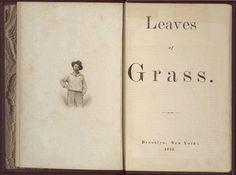 Leaves of Grass. Walt Whitman. Brooklyn, New York 1855  download it free: http://books.google.com/books/about/LEAVES_OF_GRASS.html?id=fpYRAAAAYAAJ