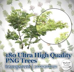 Impresionante set de 180 modelos de árboles  fotografiados con una resolución de más de 3000x3000 píxeles, en formato PNG, con fondo trans...