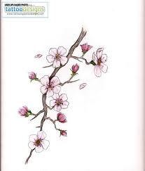 cherry blossom tattoo betekenis - Google zoeken