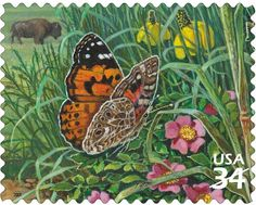 US Stamp 2001 - Great Plains Prairie Painted Lady Butterfly and American Buffalo Butterfly Flowers, Beautiful Butterflies, Valley Of Flowers, Tropical Art, Flower Stamp, Small Art, Stamp Collecting, Vintage Books, Postage Stamps