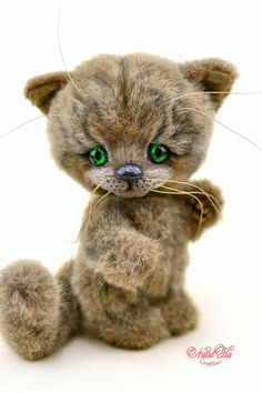teddy bear kitten milli by natalie lachnitt