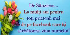 De Sânziene... La mulți ani pentru toți prietenii mei de pe facebook care își sărbătoresc ziua numelui! Facebook
