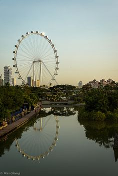 Sunrise at Gardens by The Bay, Singapore