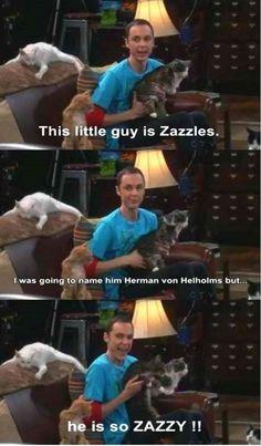 The Big Bang Theory (30 Pics)