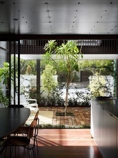 Oxlade Drive House, Brisbane, designed by James Russel Architect. Photo by Toby Scott. Architecture Awards, Interior Architecture, Outdoor Gardens, Indoor Outdoor, Outdoor Rooms, Garden Pavilion, Built Environment, Beautiful Architecture, Modern Interior Design