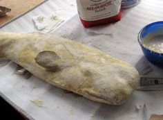 tutorial for paper mache whale (or narwhal!) #whale #papermache #narwhal