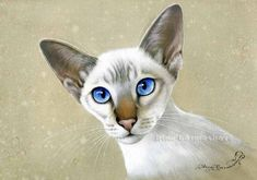 Siamese Oriental Beauty Irina Garmashova Cats