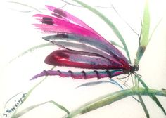 Dragonfly Original small watercolor painting 7 X 5 by ORIGINALONLY