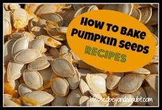 How to Bake Pumpkin Seeds!  Several different recipes to choose from depending on your taste!    Which one will you try first?    #recipes #fall #pumpkin