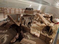 Hamster Natural Habitat, Habitat Du Hamster, Hamster Life, Hamster House, Big Hamster Cages, Gerbil Cages, Hamster Tank, Diy Hamster Toys, Hamster Terrarium
