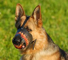 Deluxe Art #Leather #Muzzle for GSD $79.90