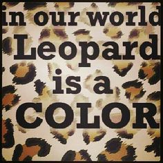 leopard print Brownie brownie on a downie