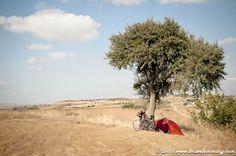 Turkey 2011 crédit : Brave Lemming